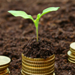 How to pick the best growth stocks