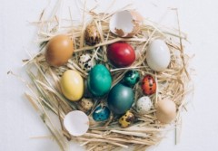 Easter colorful eggs in the nest from above