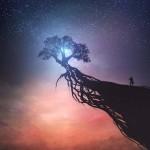 Identifying rising stars