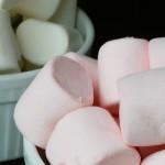07052019_Marshmallow test
