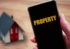 12082019_Property bulls