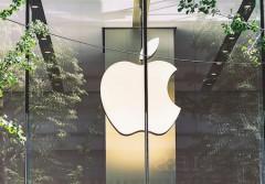 14112019_Apple