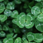 01092020_Investing luck
